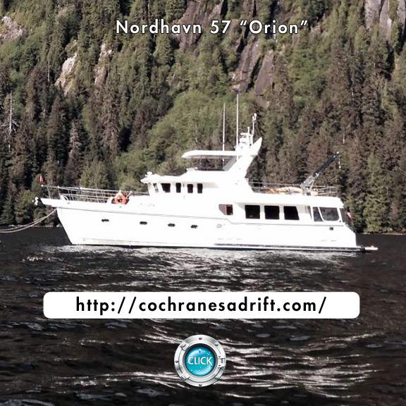 Orion Blog