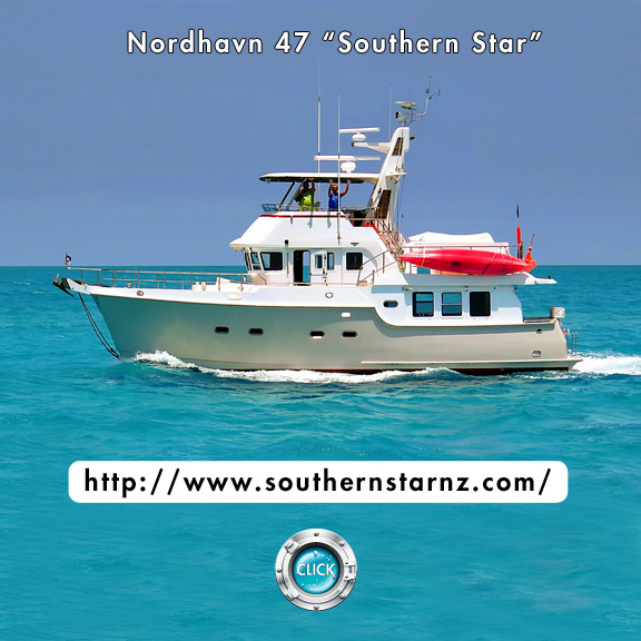 Southern Star Blog