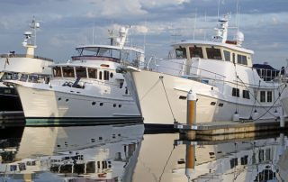 Trawlers Trawler Fest Selene