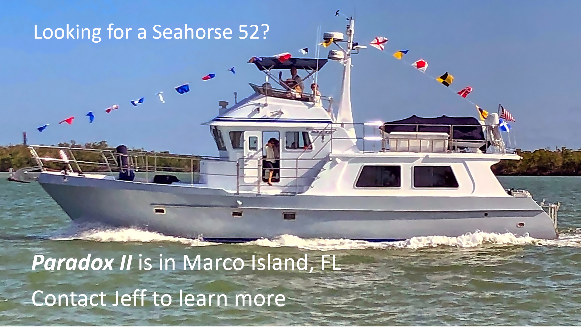 Looking for a Seahorse 52?